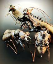 """""""Bug Series"""""""